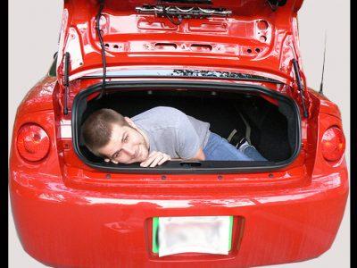 Cozy trunk