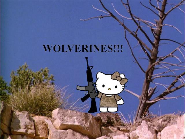 Wolverines!!!