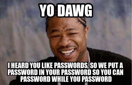 Yo dawg I heard you like passwords